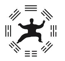 Taiji - Dao - Husum