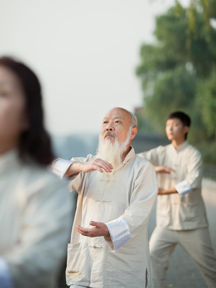 Taiji Dao Husum